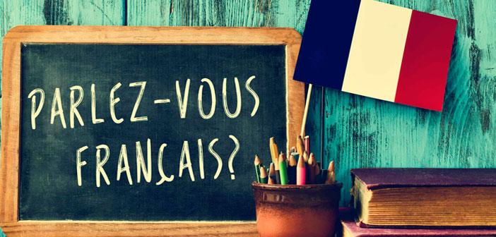 شباهت ها و تفاوت های فارسی و فرانسوی